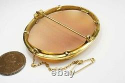 ANTIQUE VICTORIAN GOLD FINELY CARVED SHELL MUSES & DOVES CAMEO BROOCH c1880