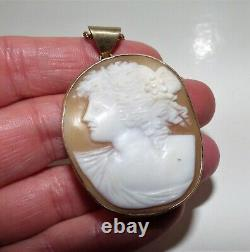 Antique Victorian Carved Shell Cameo Pendant Silver Gilt Rolled Gold Rope Chain