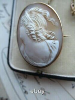 Antique Victorian Carved Shell Portrait Cameo 9ct Gold Brooch Pin