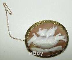 Beautifully Carved, Rare, Victorian 9 Ct Gold Cameo Brooch, Doves Of Pliny