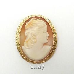 Victorian 14k Gold Carved Shell Cameo Etched Frame Brooch Pin Pendant